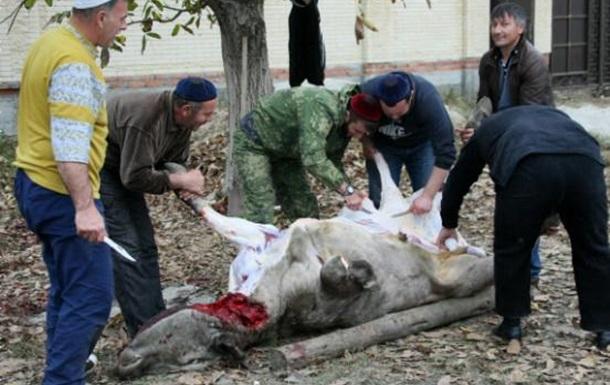 Ураза-Байрам та Курбан-Байрам в Україні пропонують зробити державними святами