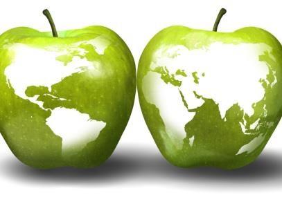 Україна – один з найбільших виробників яблук у світі