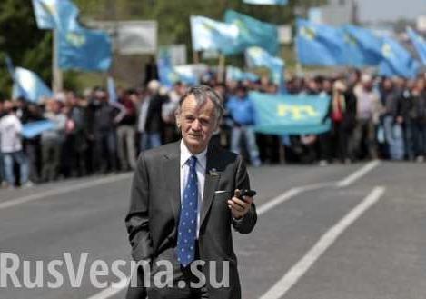 Ассенизаторы украинской пропаганды: о «проблеме» крымских татар