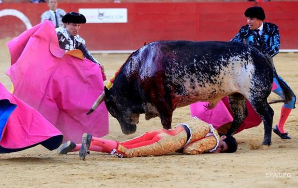 В Испании бык убил тореадора впервые за последние 30 лет