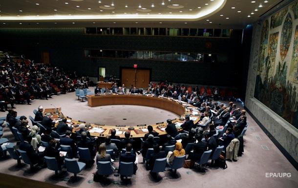 Египет заблокировал заявление Совбеза ООН по Турции