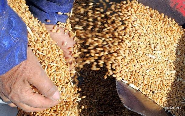 РФ становится лидером на рынке зерна - Bloomberg