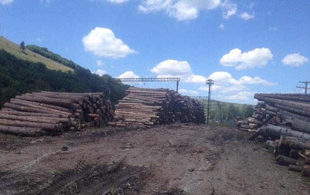 Луценко показав фото місць вирубування лісів