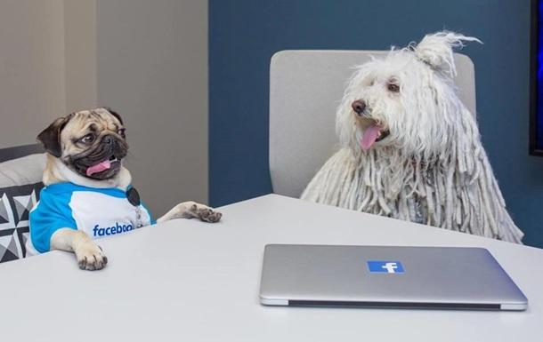 Цукерберг показал встречу своего пса со звездой сети