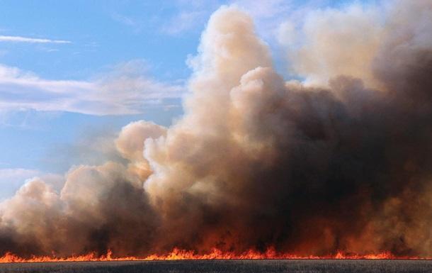 На Волині згоріло понад 40 гектарів пшениці