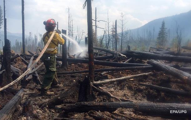 В Канаде площадь лесных пожаров достигла 240 га