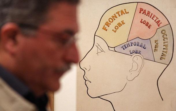 Біологи знайшли простий спосіб поліпшення пам яті