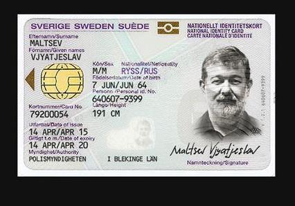 Вячеслава Мальцева могут снять с выборов из-за шведского гражданства