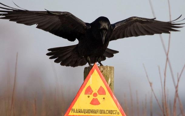 Порошенко объявил  радиоактивную амнистию