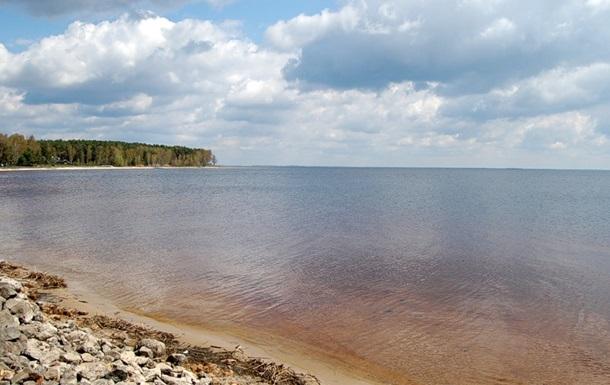 У Київське  море  випустять понад 100 тисяч мальків