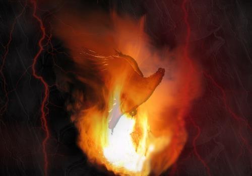 Идею мира не сжечь и не убить!