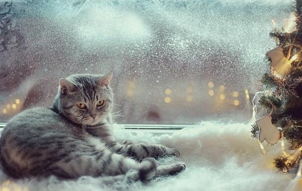 Погода в Украине будет снежной