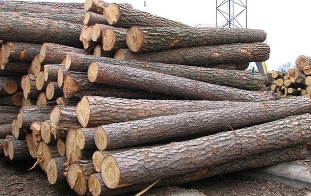 ЄС вимагає від Києва зняти заборону на вивіз лісу