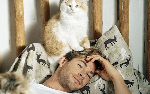 Красивые мужчины и коты