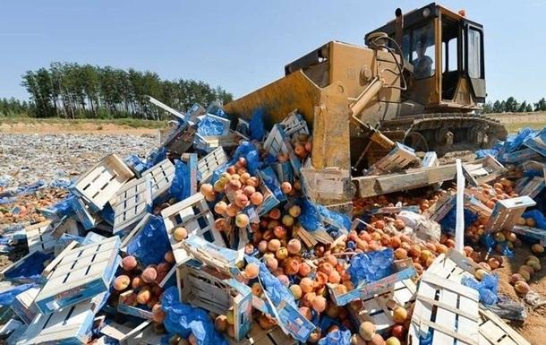 В России уничтожили девять тысяч тонн продуктов