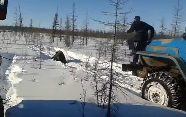 В России медведя раздавили грузовиками