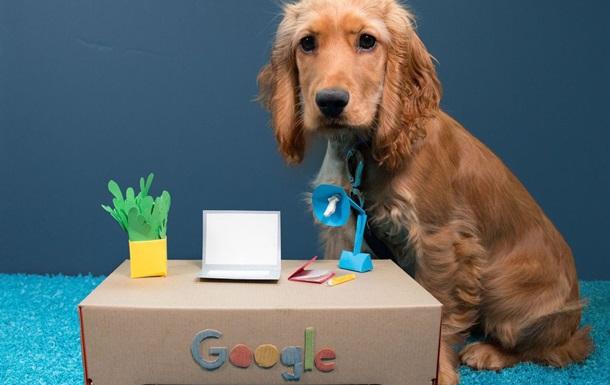 У Мережі набирає популярність новий собачий тренд