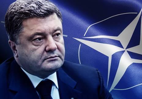 Сладкая тема: Удастся ли Порошенко провести  управляемый референдум  по НАТО
