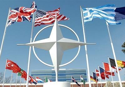 Референдум по НАТО? Нет ничего проще!