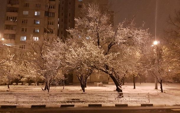 Из-за снега Украина может потерять треть урожая фруктов