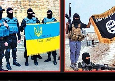 Террористы нашли друг друга