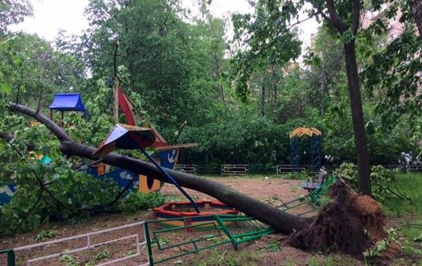 Число жертв урагана в Москве выросло