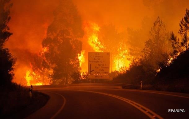 Лесные пожары в Португалии: количество жертв резко выросло