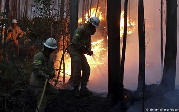 Кількість жертв лісової пожежі в Португалії сягнула понад 40 осіб