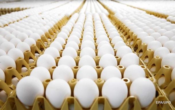 В ЄС у мільйонах яєць знайшли токсичну речовину
