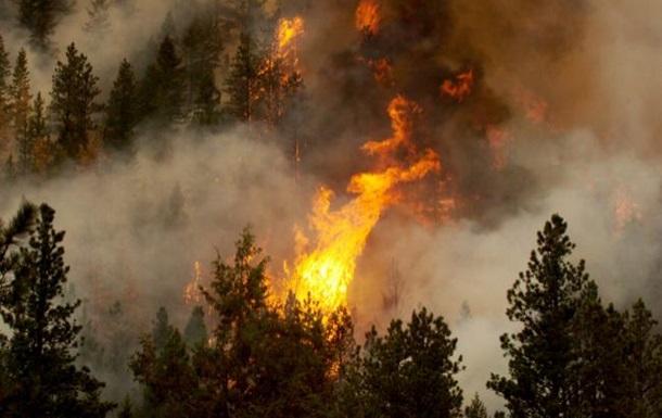 В десяти областях повышенная пожароопасность
