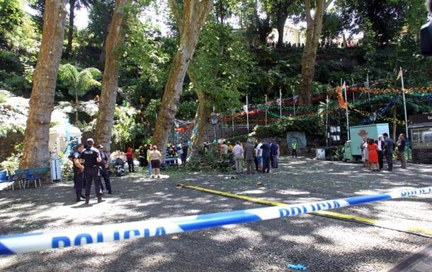 У Португалії дерево, що впало, вбило 11 осіб
