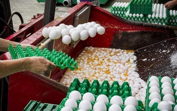 В Венгрии обнаружены крупные партии зараженных яиц