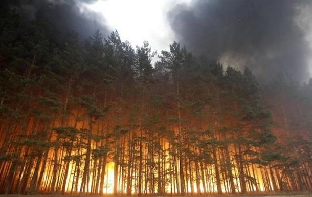 Рятувальники попередили про пожежну небезпеку у восьми областях України