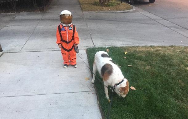 Выгуливающий пса мальчик- космонавт  стал мемом
