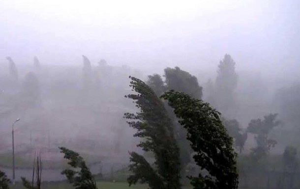 Ураган в Закарпатье: убытки на десятки миллионов