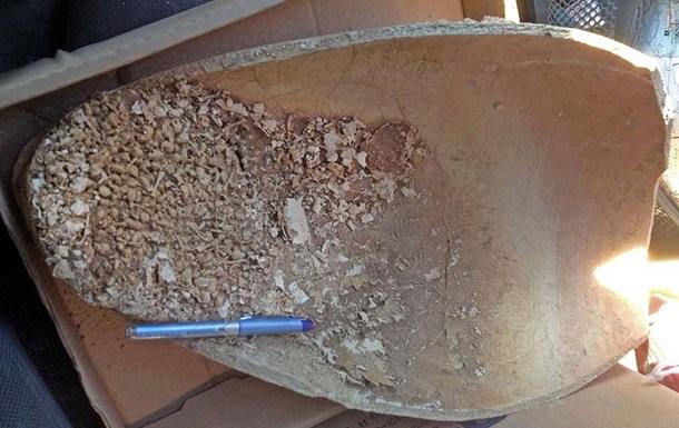 В Єрусалимі знайшли глечик з обезголовленими жабами