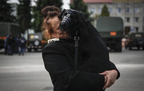 ОГА: В Калиновку вернулись все эвакуированные