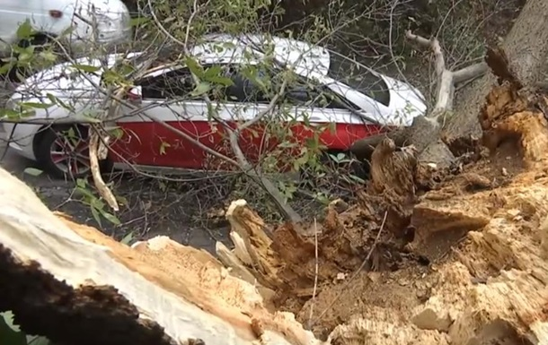 У центрі Києва дерево впало на машину