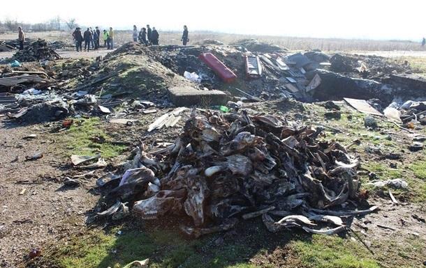 У Сімферополі оштрафували близько 400 осіб за сміттєзвалища
