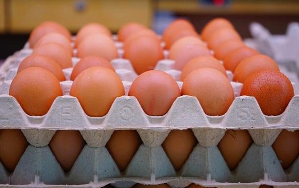 Украина рекордно нарастила экспорт яиц