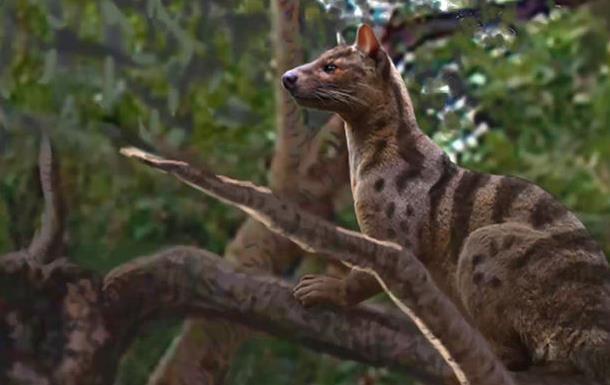 В Африке нашли неизвестных древних хищников
