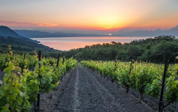 Крымские вина под эксклюзивной шведской маркой