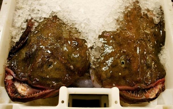У Росії знищили 20 тонн ісландської риби