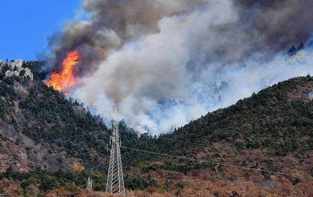 Через лісові пожежі в Італії евакуювали близько тисячі людей