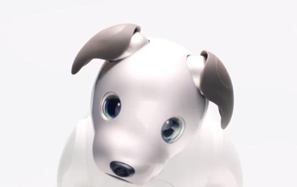 Sony створила робота-собаку з OLED-очима