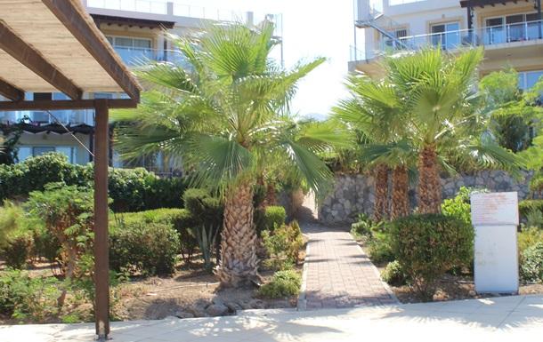 Сложно ли купить недвижимость на Северном Кипре?