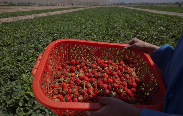 В Польше меняют правила трудоустройства иностранцев