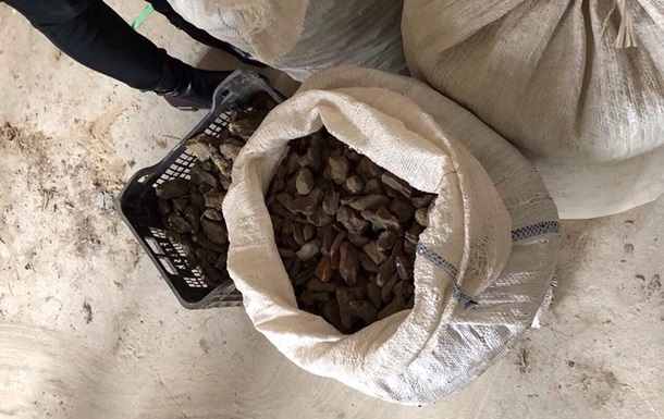 У підпільних цехах Луцька знайшли 200 кг бурштину