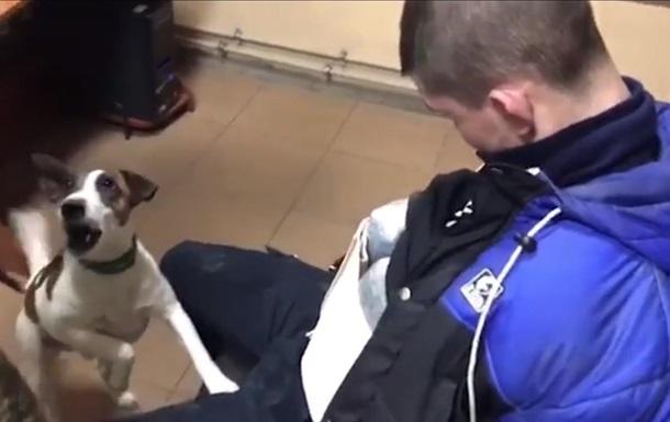 На кордоні з Росією затримали українців з 5 кг марихуани