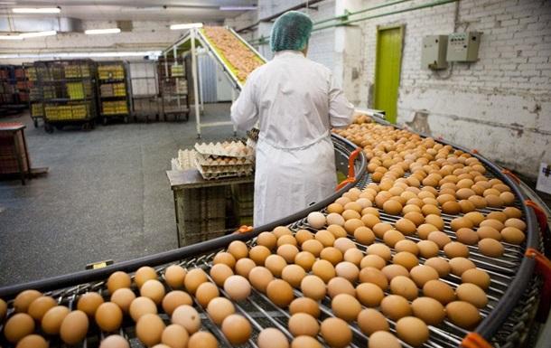 Украина в полтора раза нарастила экспорт яиц
